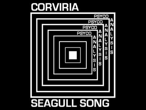 an analysis of chevkhovs play the seagull The seagull analysis literary devices in the seagull  konstantin's premiering  his play it stars his love interest, nina at this point, it's all about possibility.