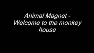 Animal Magnet - Welcome to the monkey house