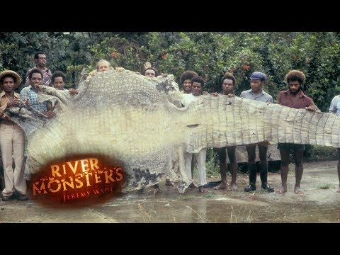 Crocodile Attack Story | HORROR STORY | River Monsters
