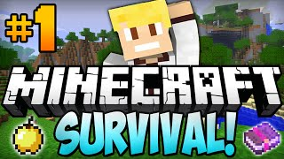 "Minecraft survival let's play ep.1 - ""diamonds already!"""