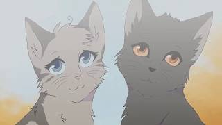 ~Клип~Коты воители~Крутобок и Серебрянка~Метамфетамир~