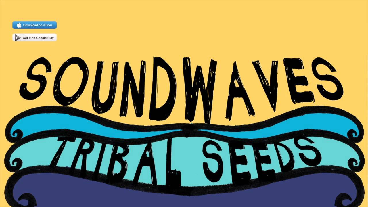 tribal seeds soundwaves feat eric rachmany of rebelution