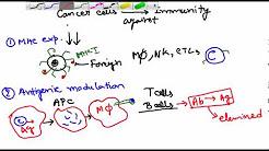hqdefault - Stress Depression Immune System Cancer Pdf