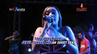 Download Video SUKET TEKI   Sabrina irLAnda 2016 MP3 3GP MP4