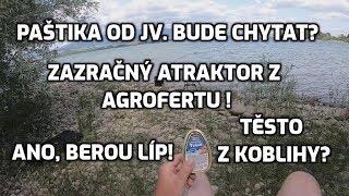 Kapři na paštiku z reklamy JV. Neuvěřitelný atraktor na ryby.