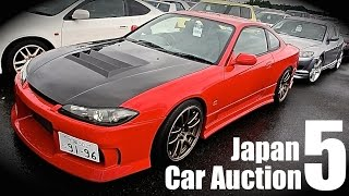 Japan Auction Walkaround #5 - Can I Buy Them All?