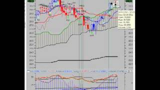 The Vulcan Report (202) Feb 14 2011 - Precious Metals ready to breakout or breakdown.mp4
