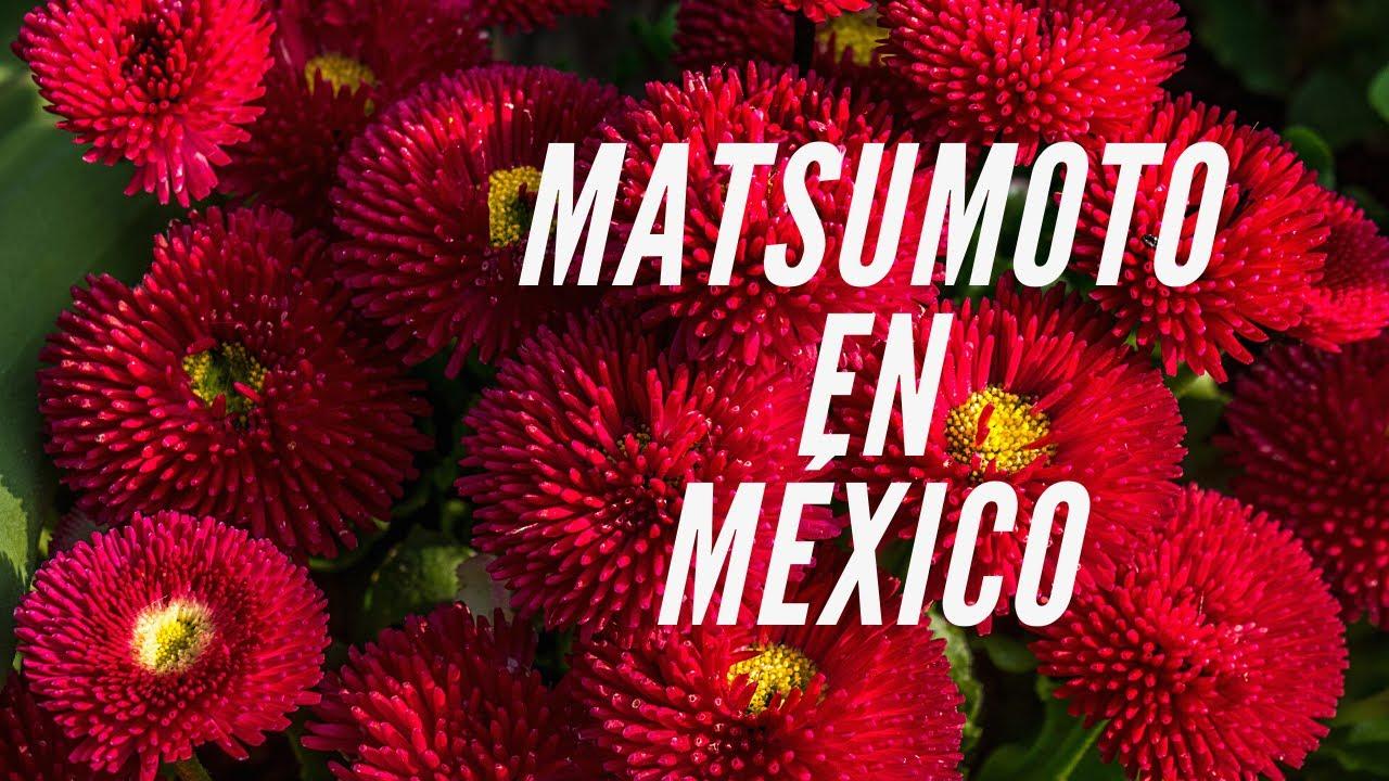 Download Matsumoto en México