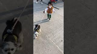 귀염❤️심쿵주의❤️15개월 아기가 댕댕이 산책 시켜요^…
