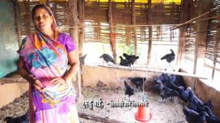 Kadaknath Murgi Palan