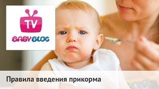 Со скольки месяцев и чем следует подкармливать ребенка?