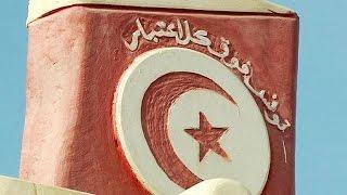 Gambar cover Tunus'ta Yasemin Devrimi'nin 5. yıl dönümü törenleri