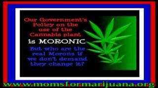 LEGALIZE not LEGAL lies