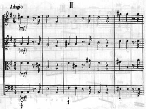 """[Zeljko Straka] Vivaldi: Concerto for Strings in G, """"Alla Rustica"""""""