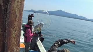 新潟県上越能生漁港のこうゆう丸です。 http://www7a.biglobe.ne.jp/~ko...
