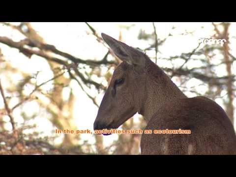 Video inducción Parque Nacional Torres del Paine