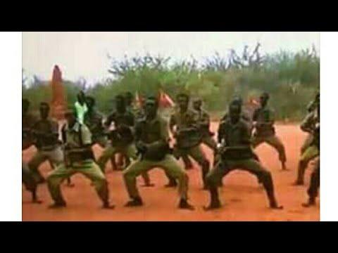 Ebla 12,2018. Oromoo sabni Koo Dhiiraa dhalaanii