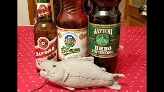 Осетинское пиво(, 2018-03-30T07:37:58.000Z)