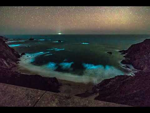 Timelapse: Bioluminescent waves glowing in Big Sur
