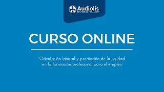 Curso online de orientación laboral y promoción de la calidad en la formación para el empleo