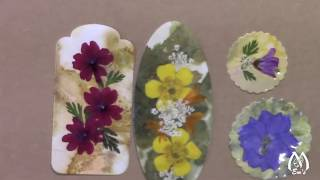 Applying Packing Tape to Pressed Flowers   Demonstration   Tips   Results