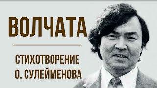«Волчата» О. Сулейменов. Анализ стихотворения