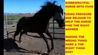 How To Correct A Horse Who Acts Disrespectful & food protective ear pinning  Rick Gore Horsemanship