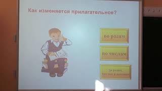 Русский язык, 4 класс - Склонение имен прилагательных