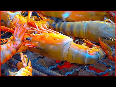 Shrimp River prawn, Squid and Barramundi – Bangkok Thailand Street Food
