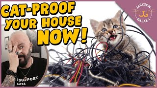 How to CatProof Your Home!