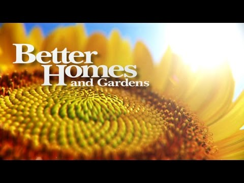 Free Better Homes And Garden Dollar Tree Coupon Chat