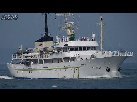 若鳥丸 WAKATORI MARU 鳥取県海洋練習船 Training vessel 関門海峡 2016-JUL