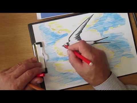 Как разукрасить ласточку