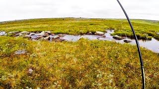 16. Рыбалка на Кольском полуострове. Предисловие