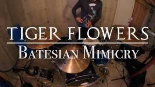 "Tiger Flowers ""Batesian Mimicry"" Drums"