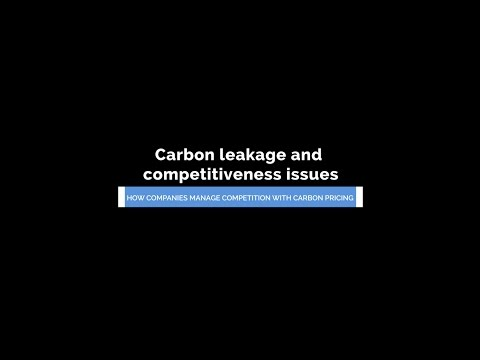 Carbon leakage and competitiveness issues - Liv Rathe, Norsk Hydro