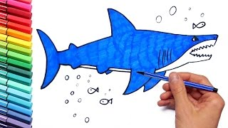 Shark Drawing and Coloring for Kids - Teaching How to Paint with Colored Markers and Stickers