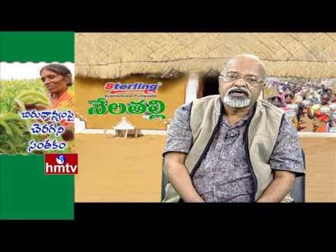 Deccan Development Society Promotes Organic Farming By P.V. Satheesh | Nela Talli | HMTV