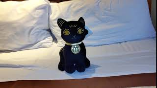 LUXOR Brand Kitty Cat On Bed