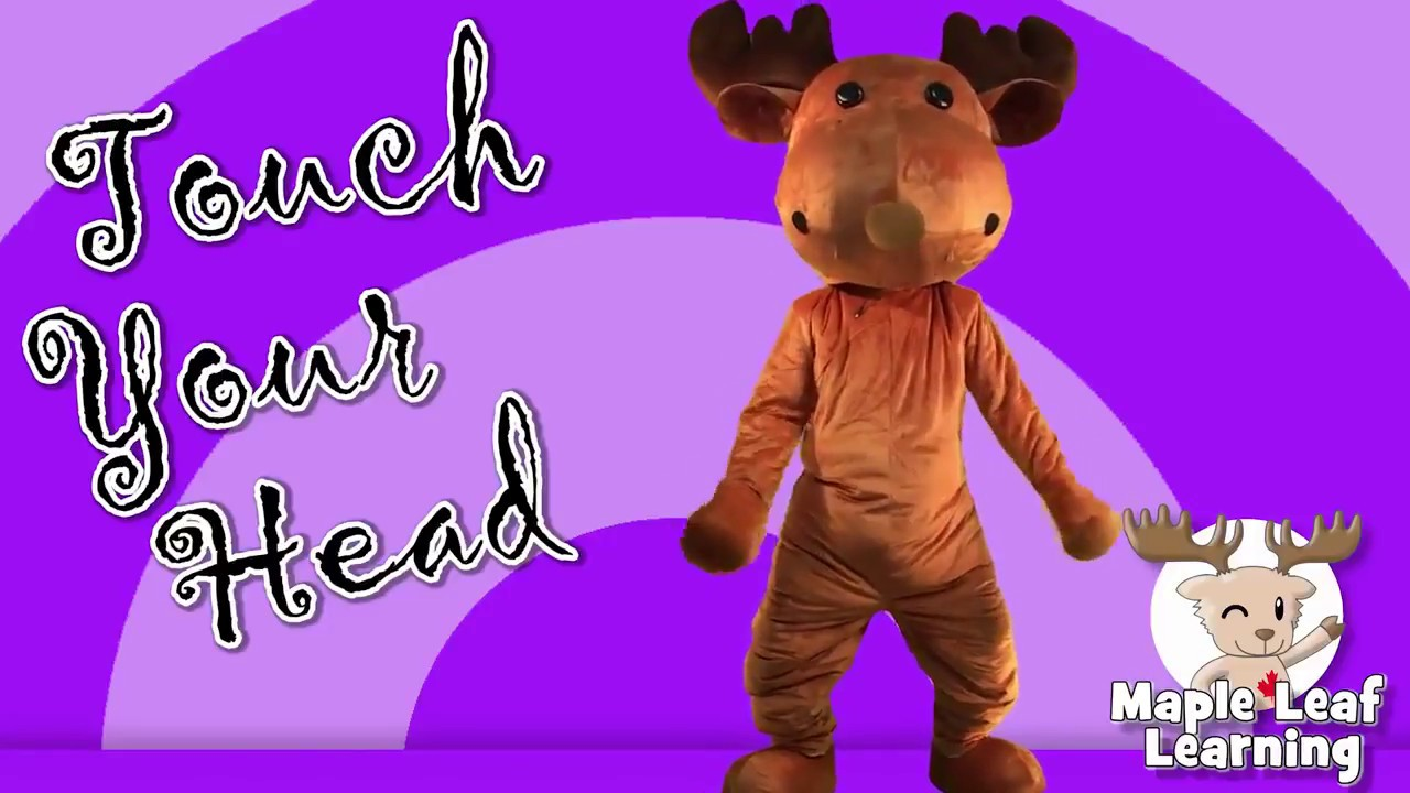 Touch Your Head Action Songs for Kids - YouTube