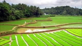 The Spirit of Kerala