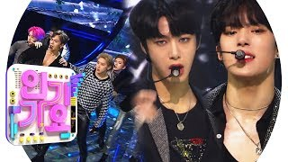 MONSTA X - Alligator @ Popular Inkigayo 20190303