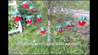 видео Идеи для сада своими руками: мастер класс для начинающих