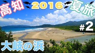 【旅行】 高知 夏旅 2016 #2 〜柏島・大岐の浜・海癒・ハイビスカス食堂〜