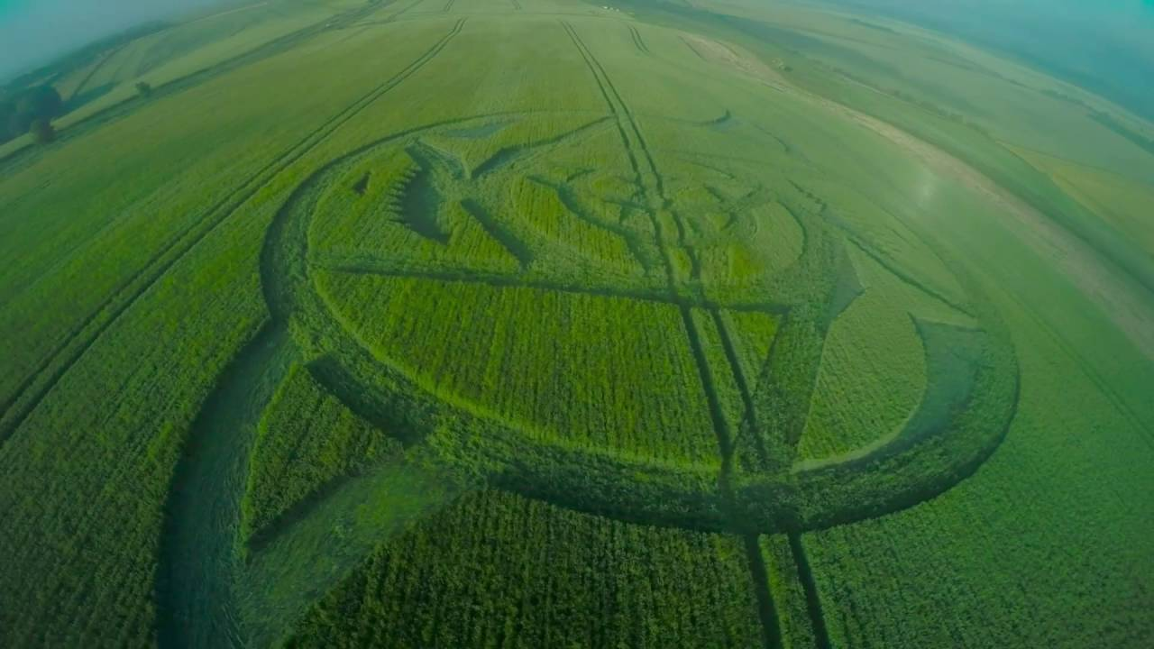 Crop Circle. Shark & Fish , Hackpen Hill, Avebury. 24.6 ... |Chilbolton Crop Circle Explanation