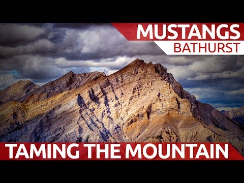 Tame the mountain - Mustangs at Bathurst