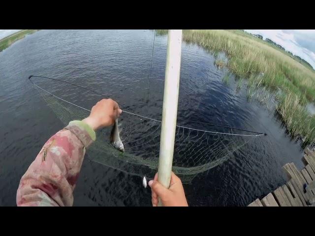 Рыбалка на паука 2019