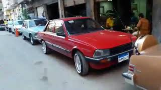 الاسود بيجو 504  و 505 اجمل سيارات مصر