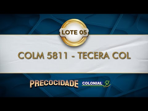 LOTE 05   COLM 5811
