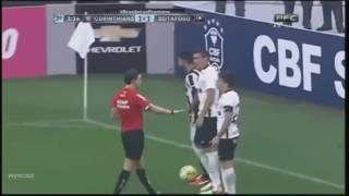 Leandrinho (96) - Botafogo 2016 - Skills and Highlights